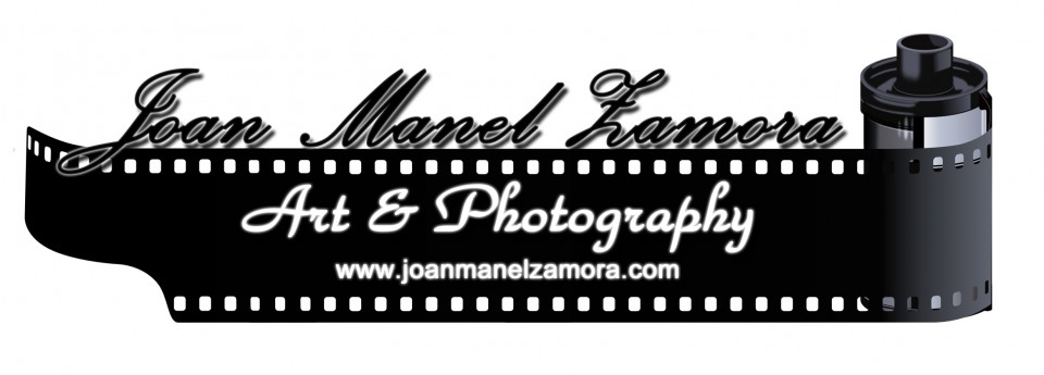 logo 2014 con link jp