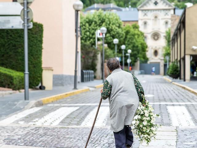 En busca de flores