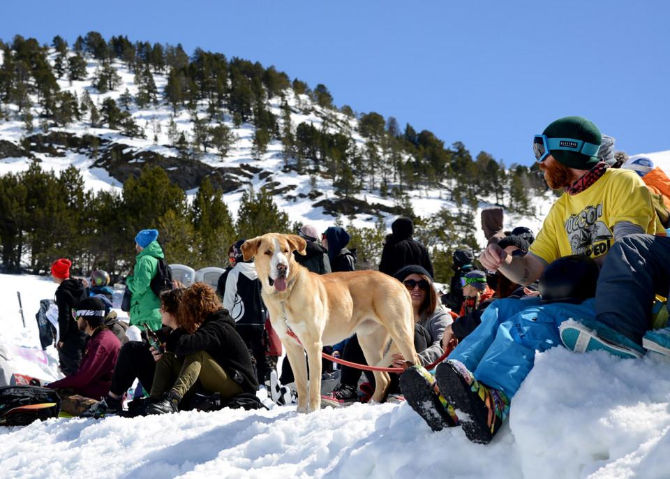Publico-Total-Fight-snowboard