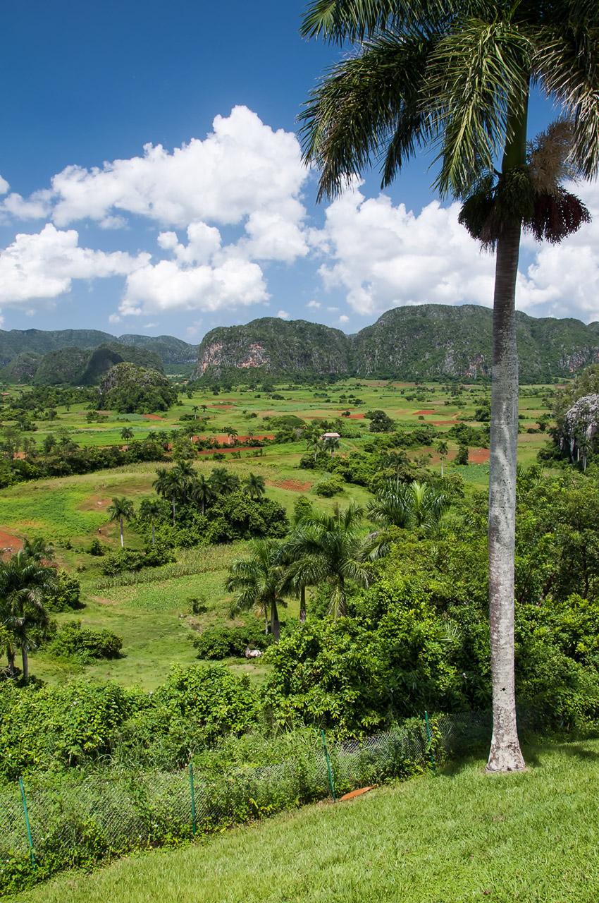 Vista desde el hotel Los Jazmines
