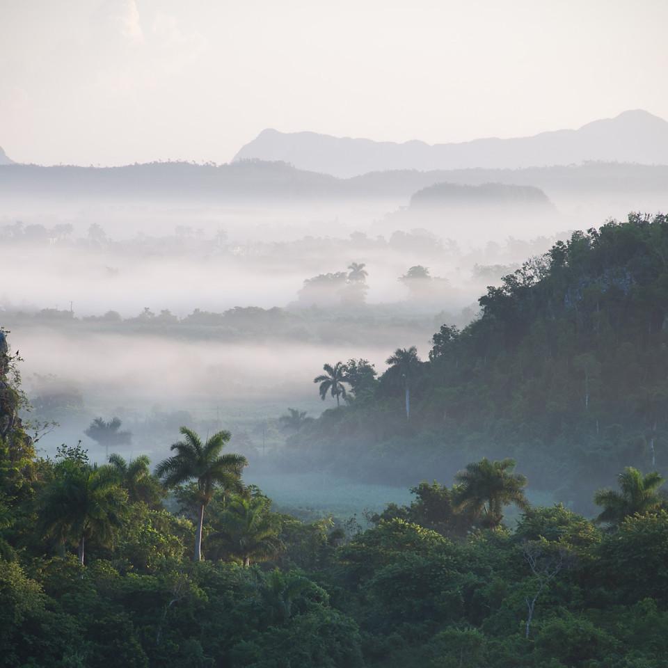 El valle de Viñales, Cuba bajo la niebla