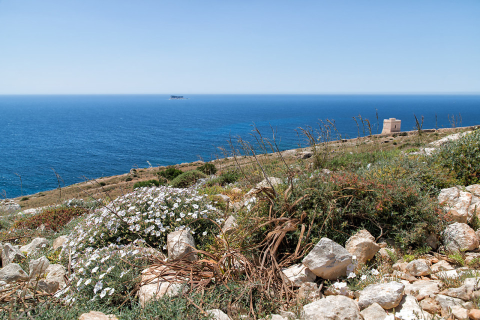 tower-Malta_Mnajdra0004