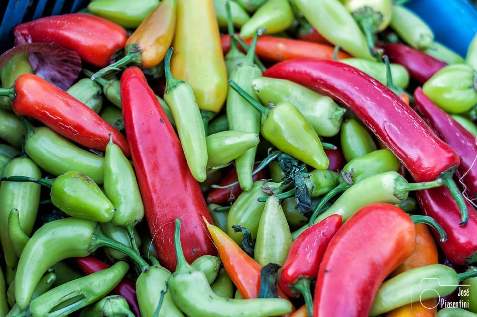 pimientos-mercado-de-Rissanii