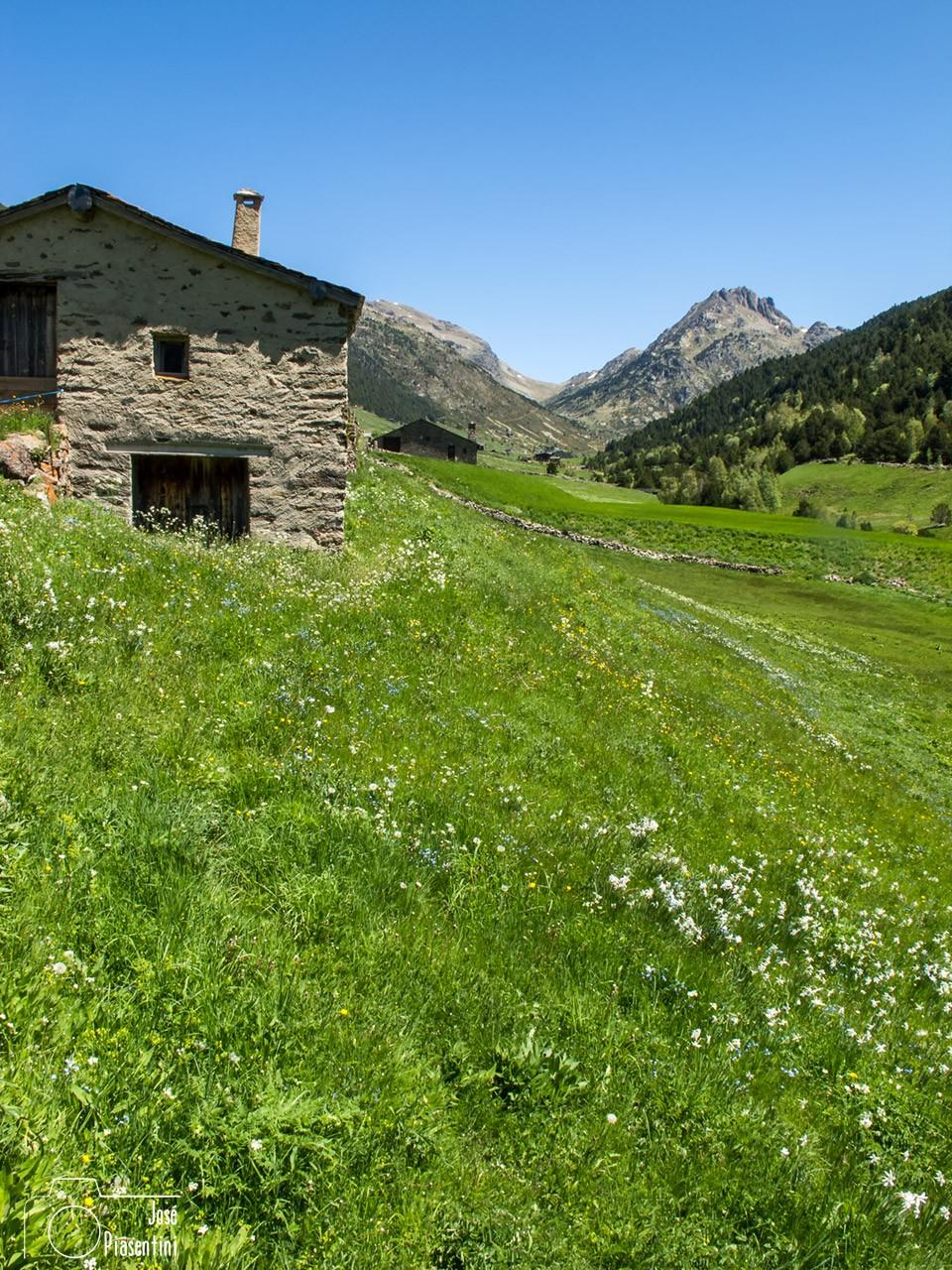 Entrada-Incles-Andorra