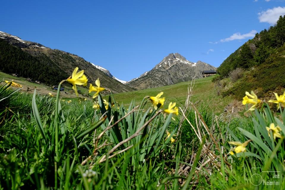 Vall d Incles, el valle más bonito de Andorra