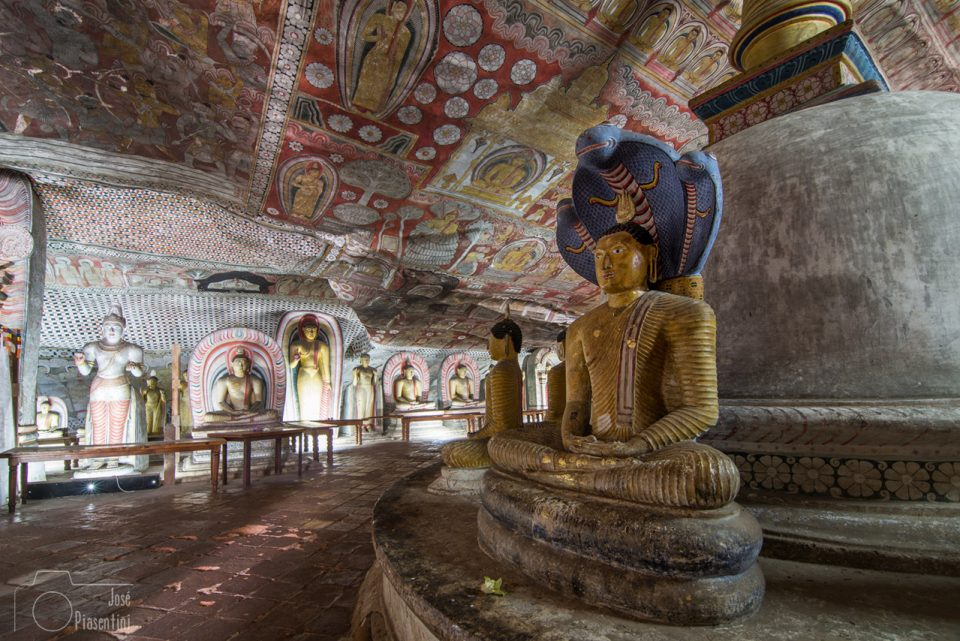 Day tours to Sigiriya from Colombo and Dambulla