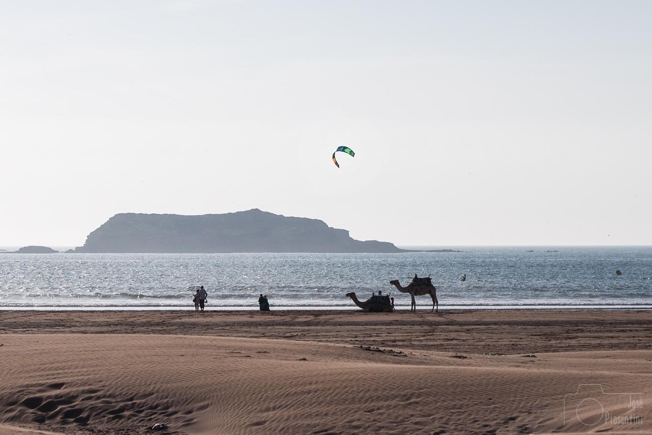 playa-camellos-marruecos