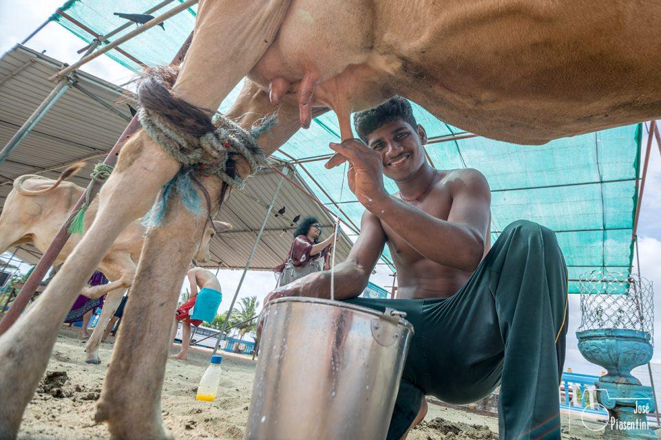 Fotografias de Sri Lanka y su gente - Upaveli