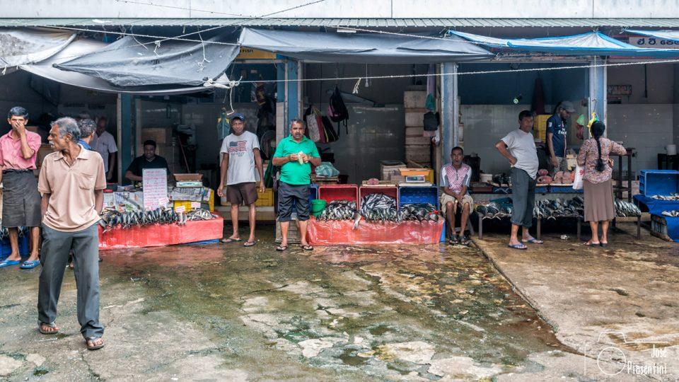 pescados-kandy-mercado