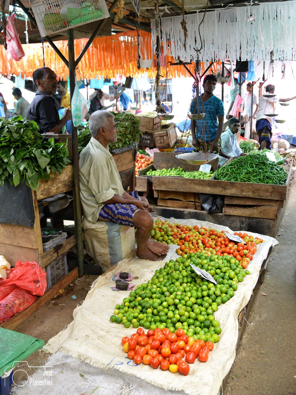 vegetables-kandy-market