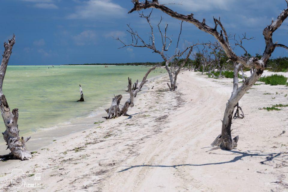 Holbox, la isla del Caribe Mexicano que hay que conocer alguna vez