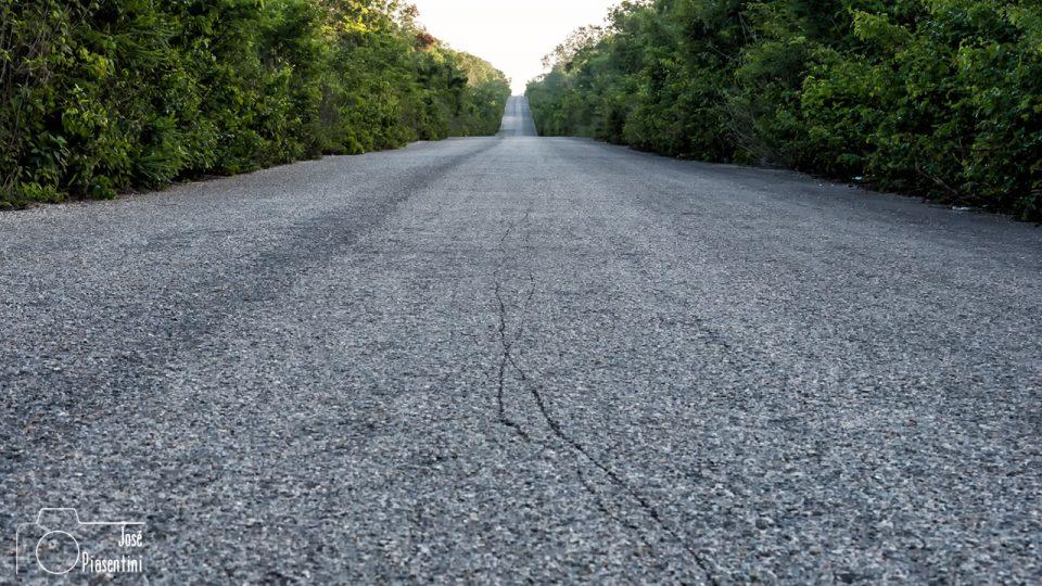 La ruta que te lleva a Holbox