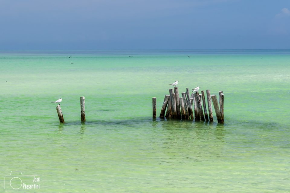 Holbox-sea-Mexico