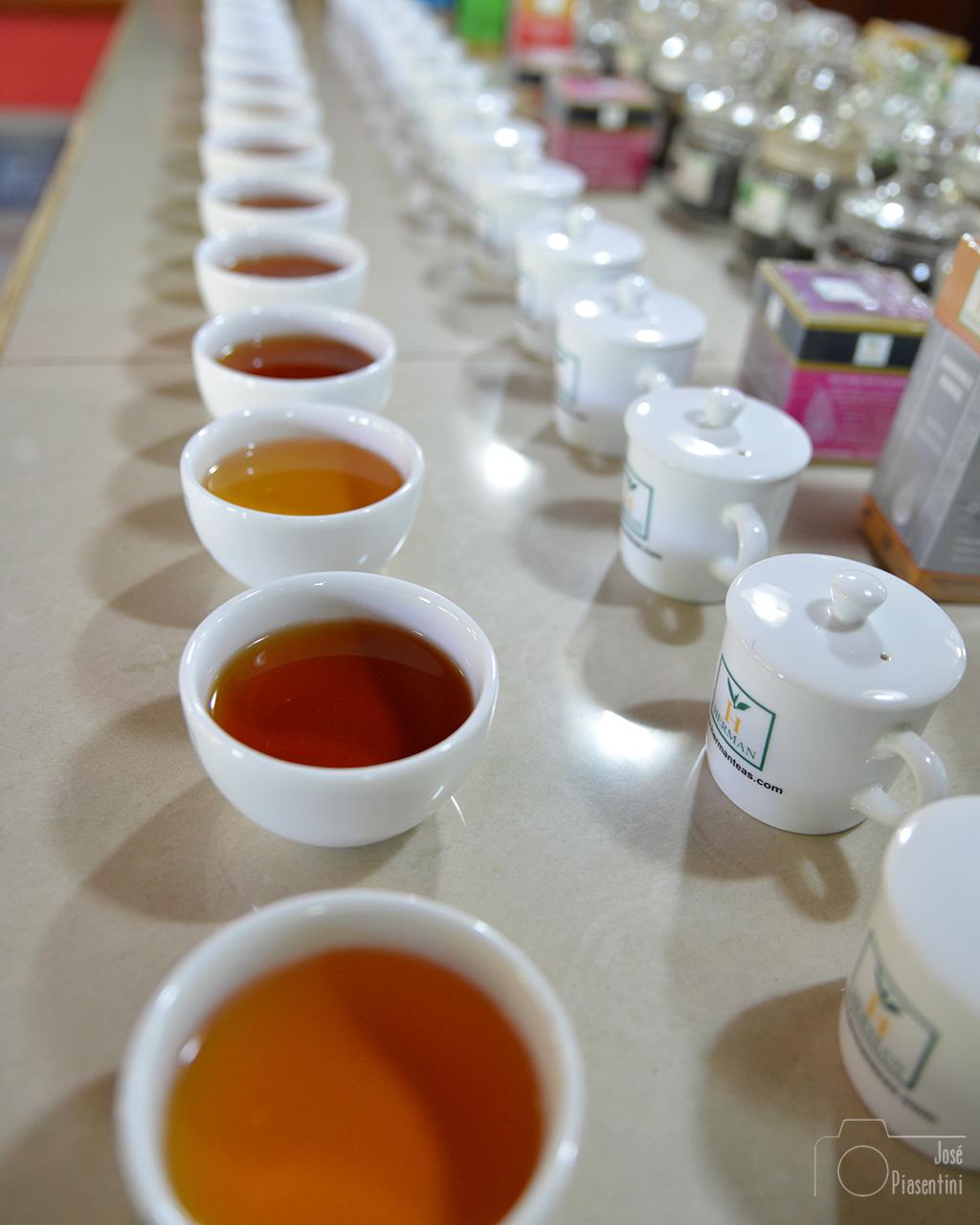 tea-variety-Handunugoda
