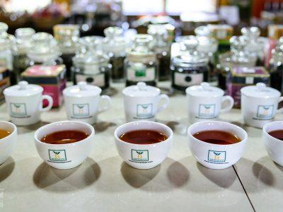 Handunugoda tea factory, Sri Lanka