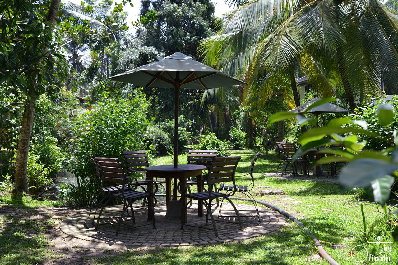 Gardens-Handunugoda-Tea-Factory