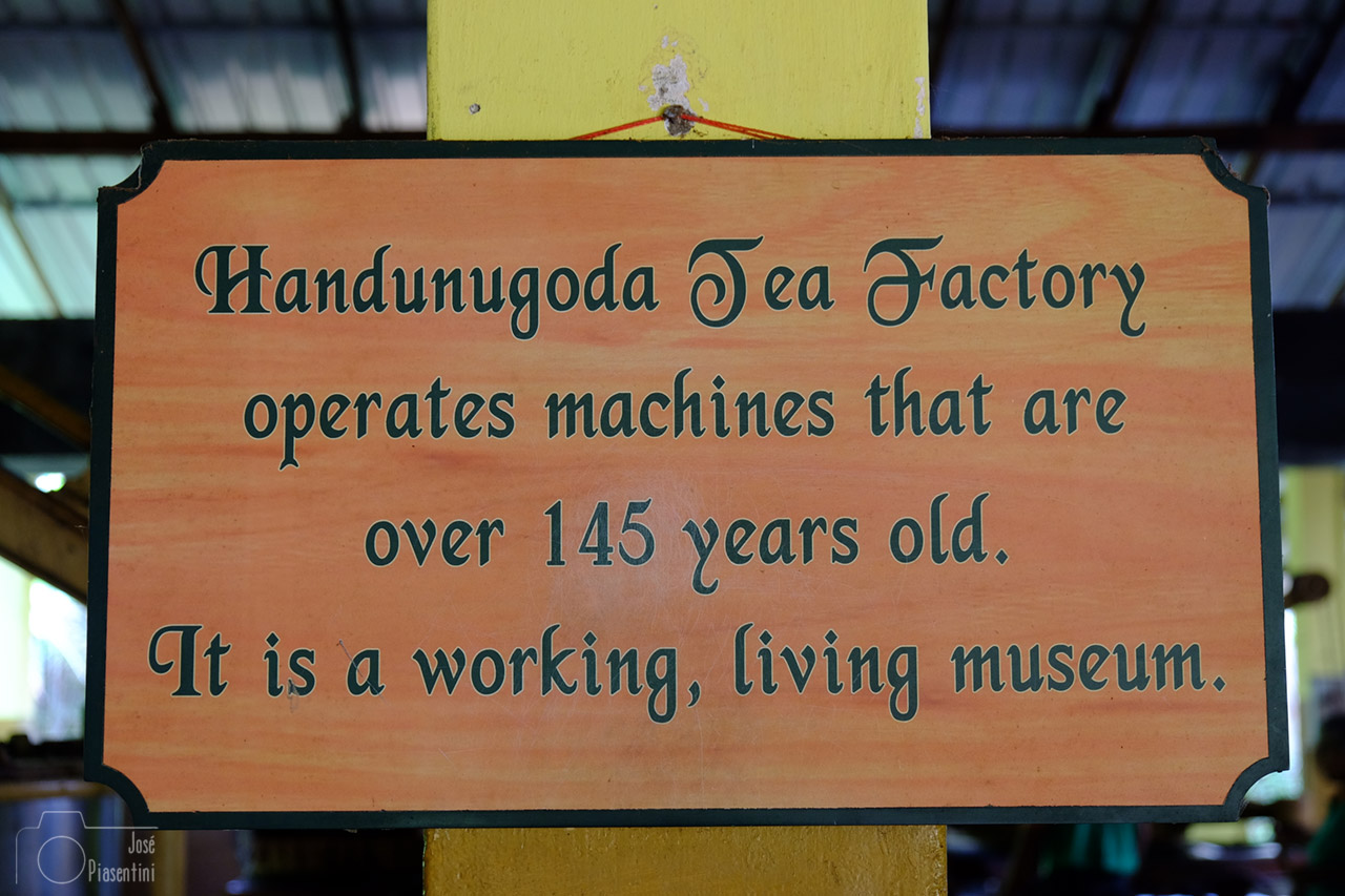 machines-Handunugoda-Tea-Factory