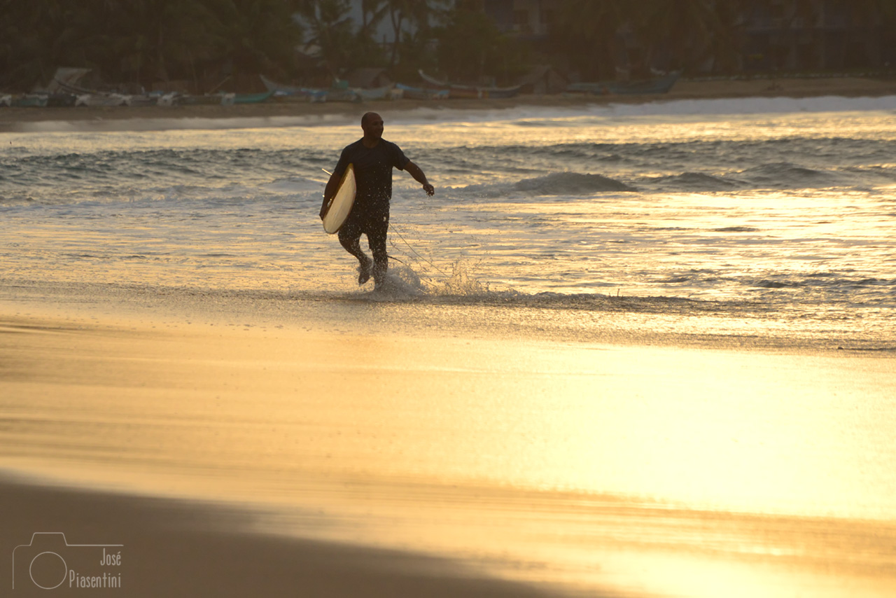 Sunset at arugam bay - Surfing