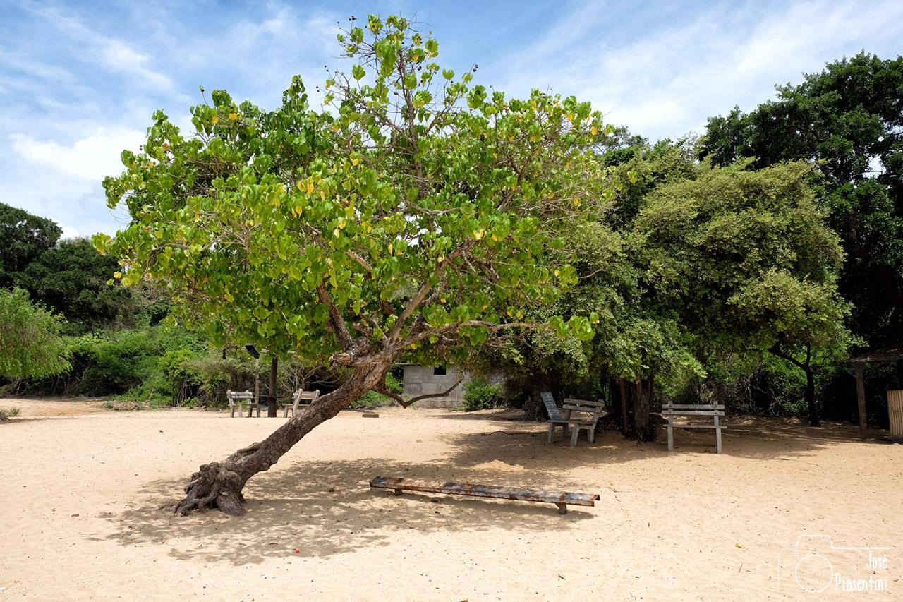 Sri Lanka NE - Marble Beach
