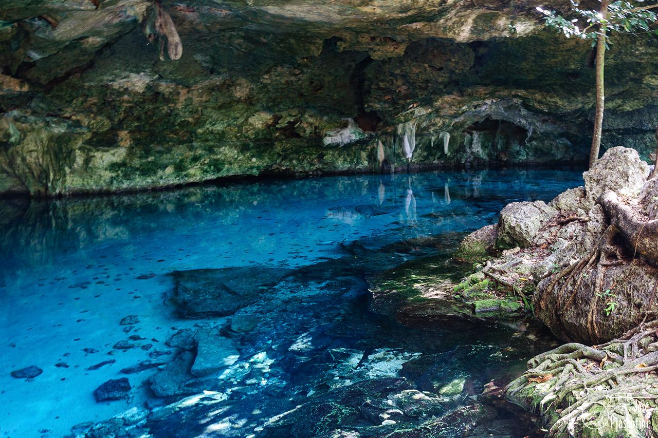 Cenote 2 Ojos Riviera Maya