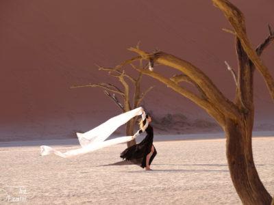 Sossusvlei y Deadvlei, Namibia