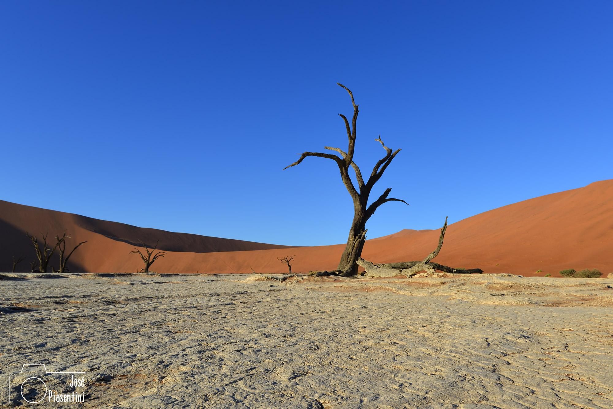 Namib-Desert-Deadvlei