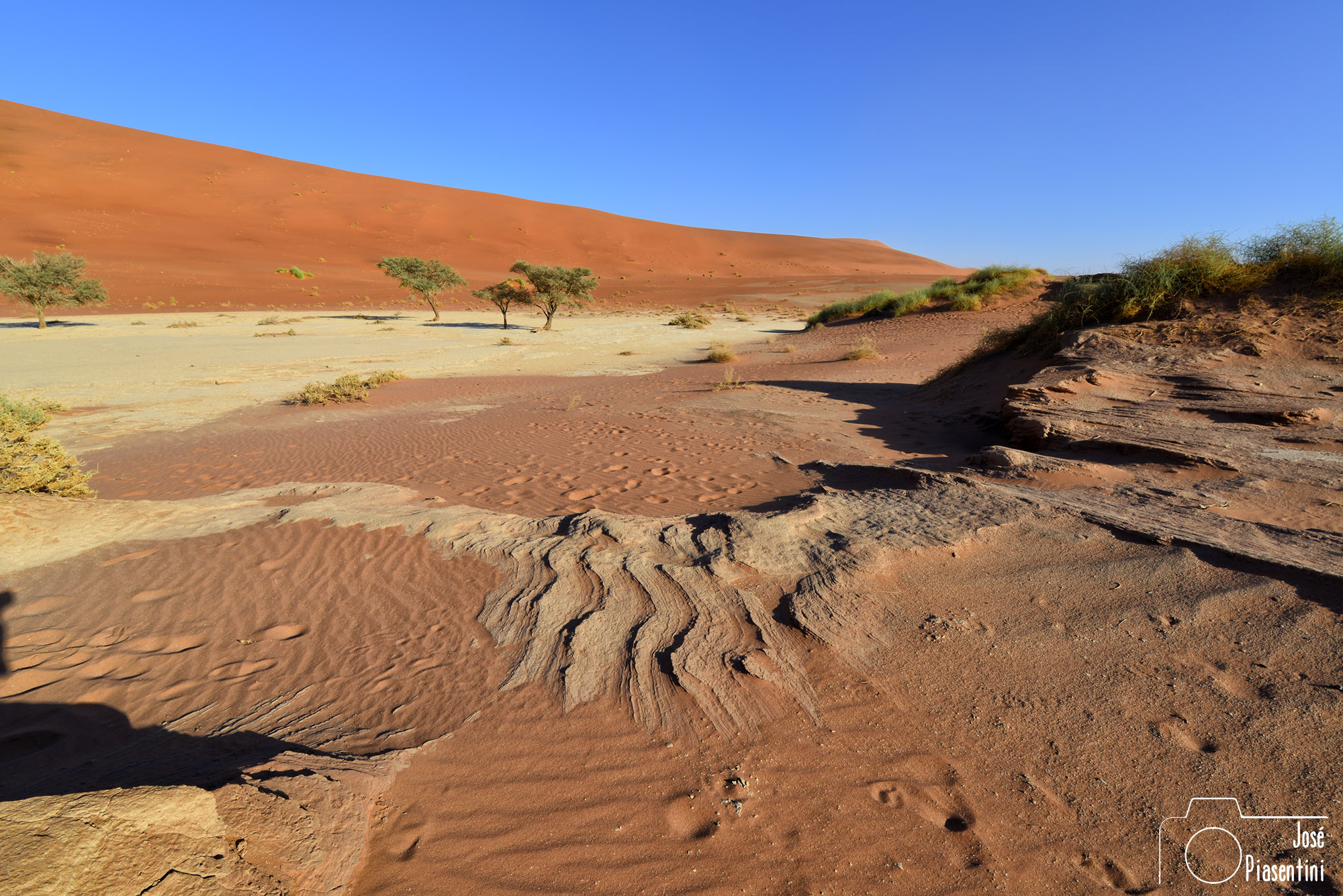 Red sand Deadvlei Namibia