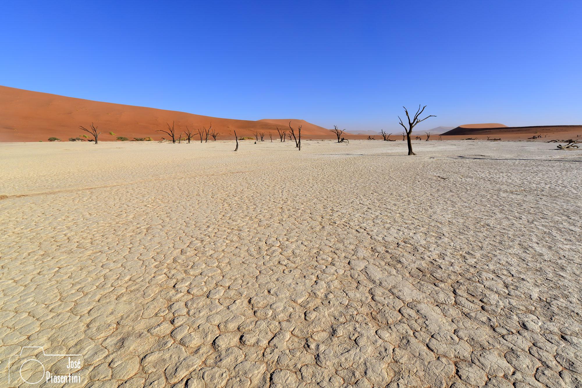 Deadvlei landscape Namibia