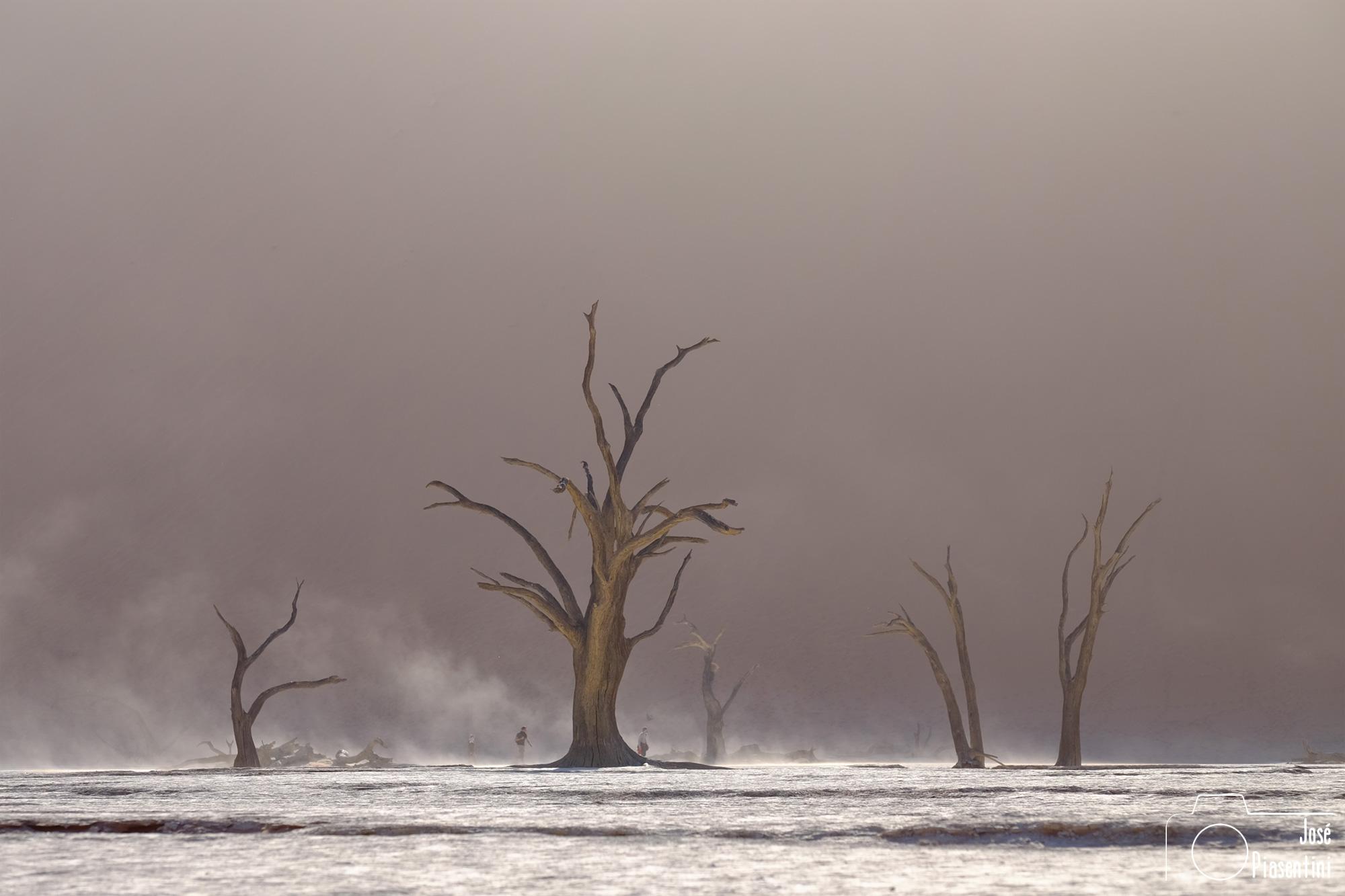 Deadvlei-Namibia-Africa