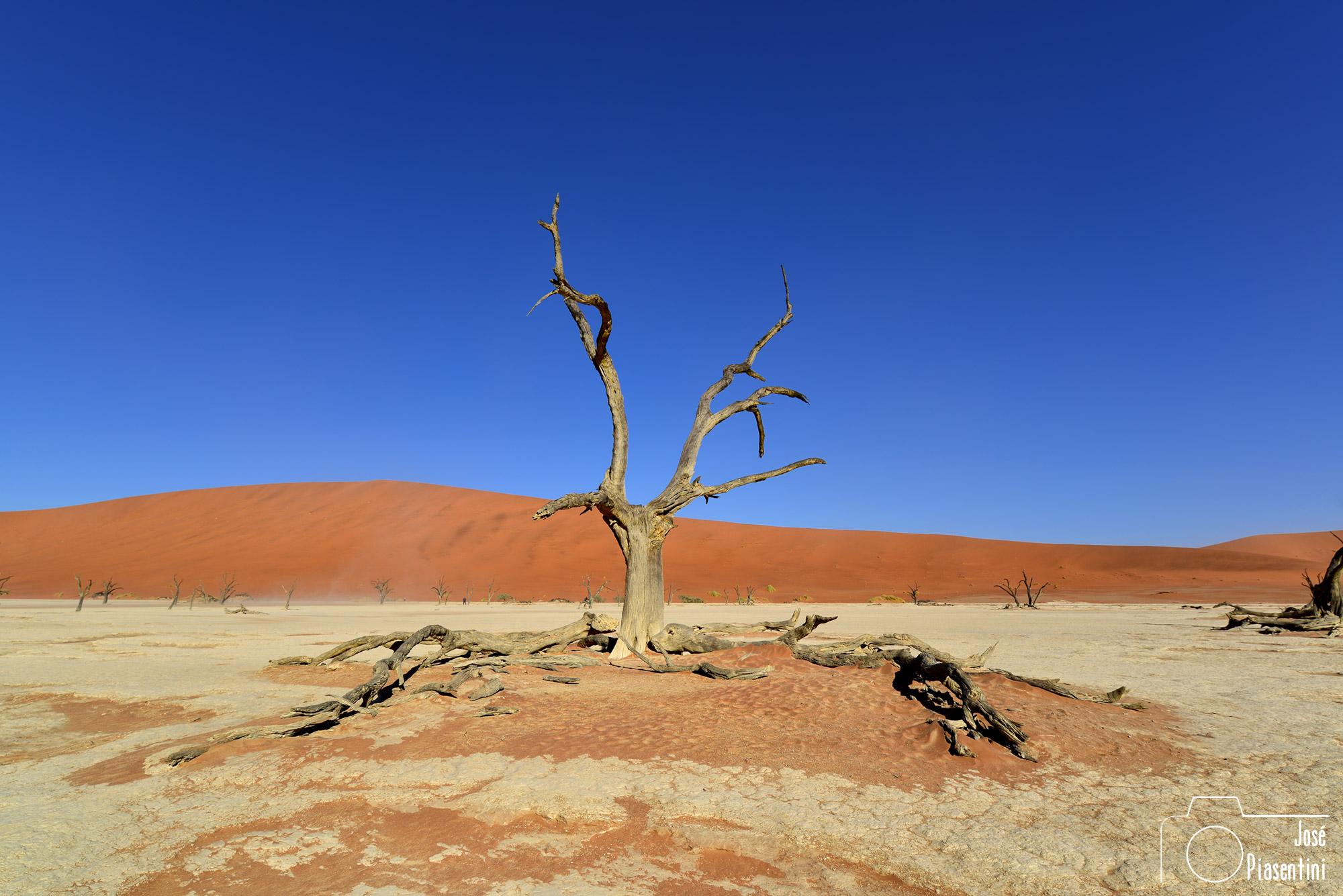 Namibia-Sossusvlei-y-Deadvlei