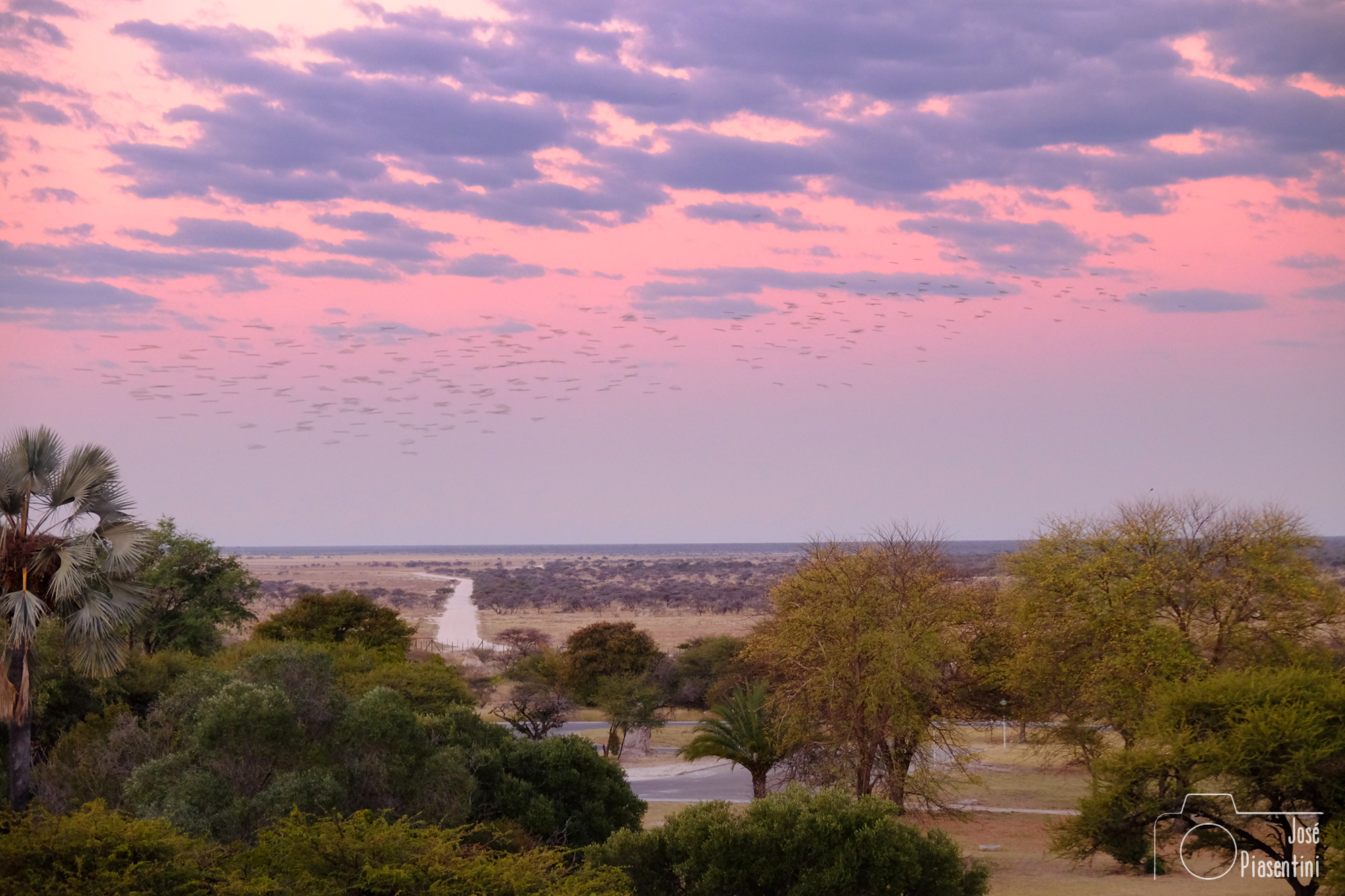 Etosha-East-Namutoni-Camp