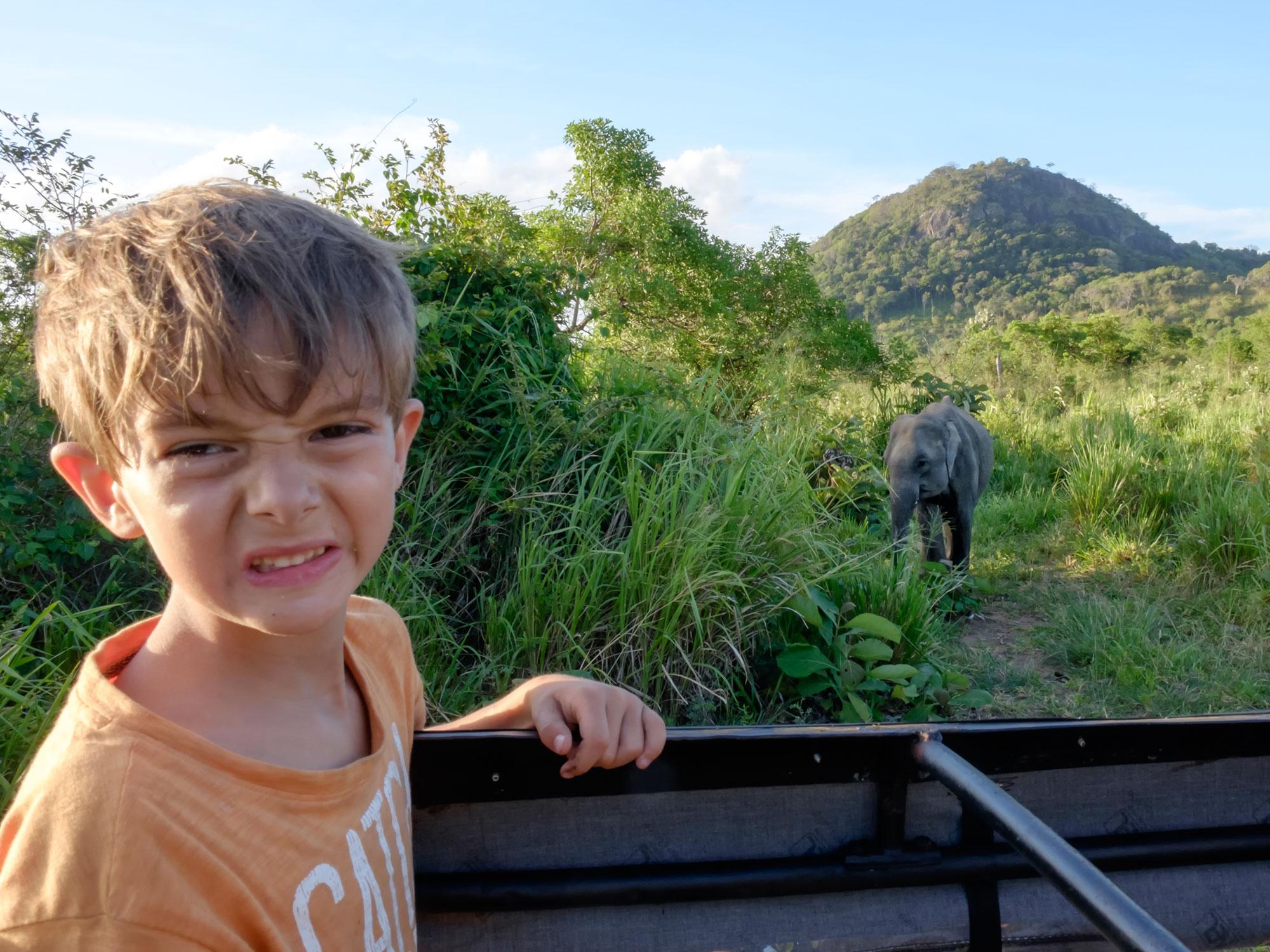 Visitar Sri Lanka con niños