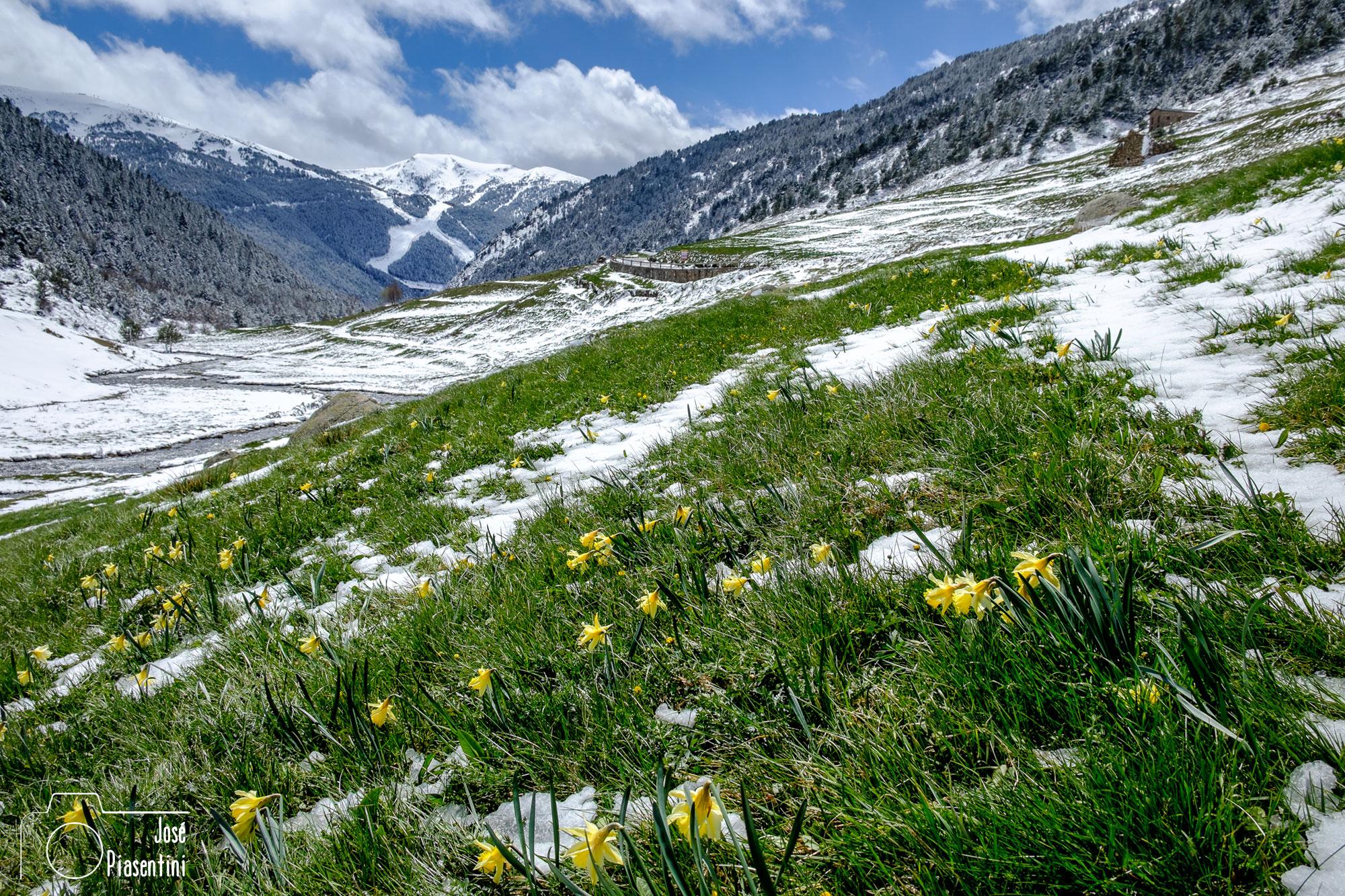 primavera en Andorra Aliga slope Soldeu El Tarter