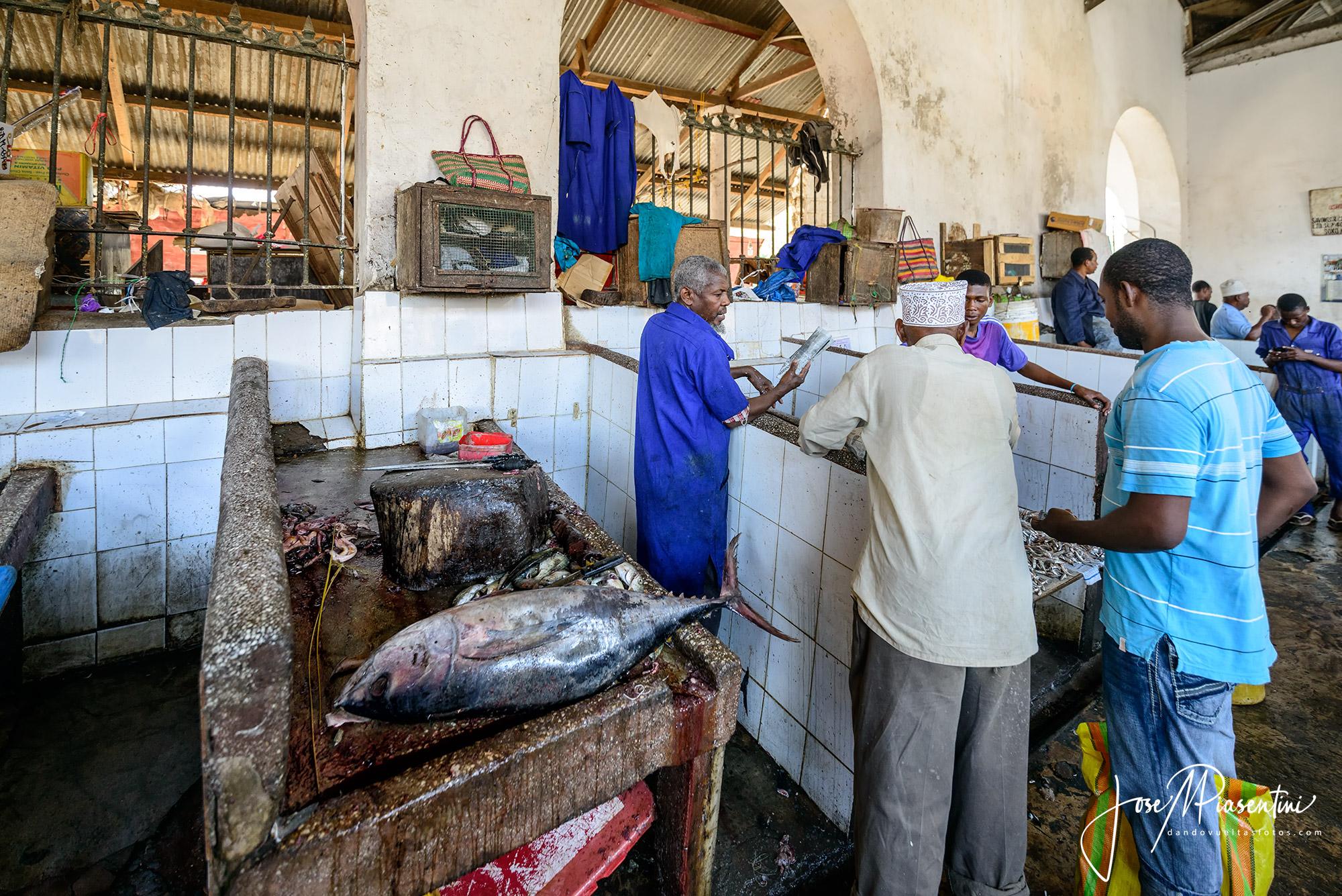 fish zanzibar tuna