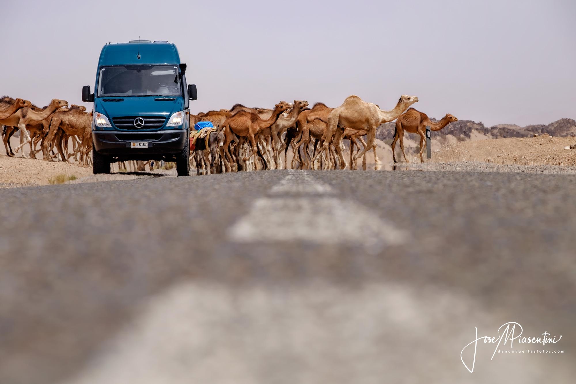 Camino-de-Tissint-a-Ksar-Talnidif-Marruecos