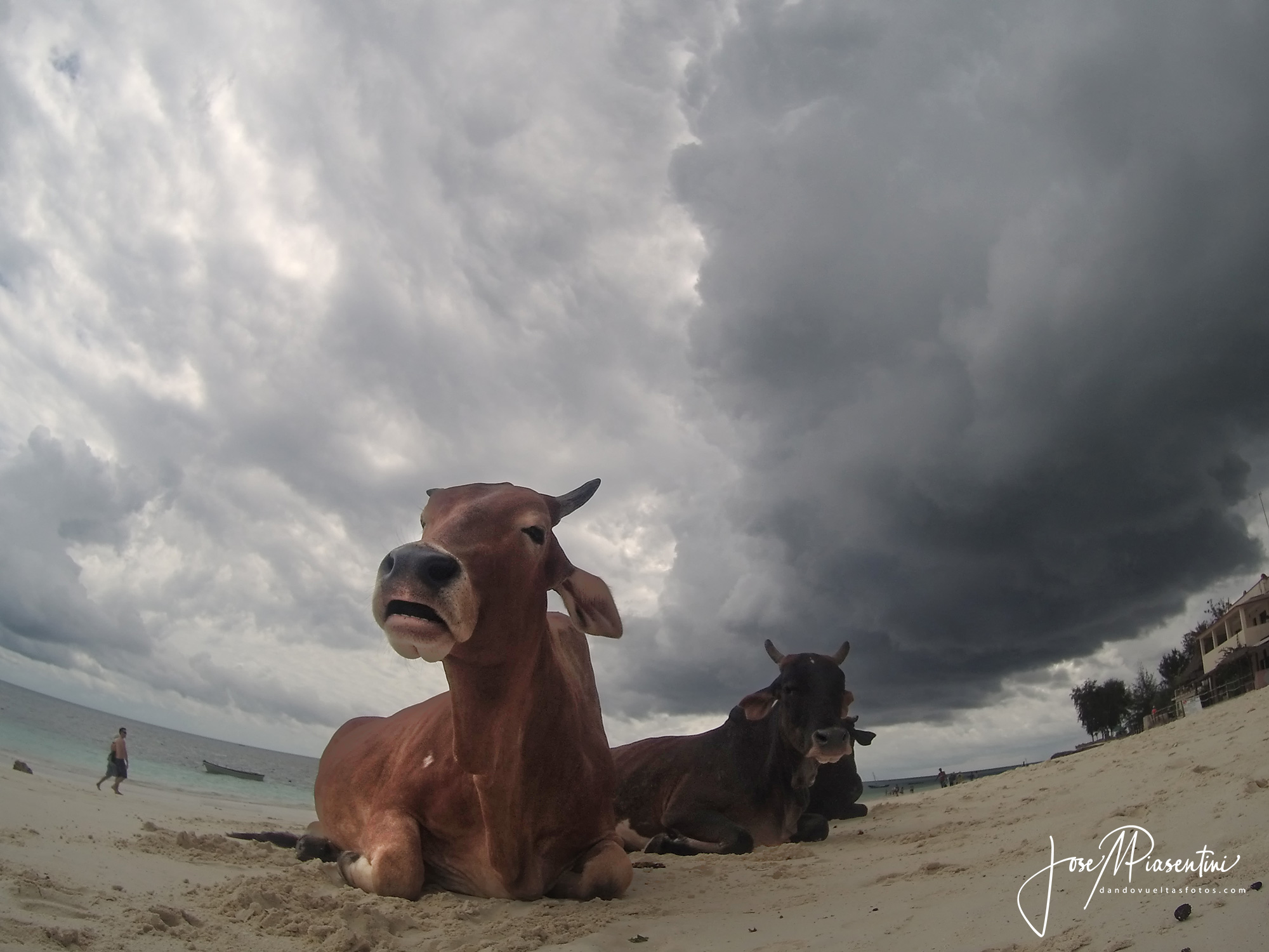 Nungwi playa zanzibar vaca