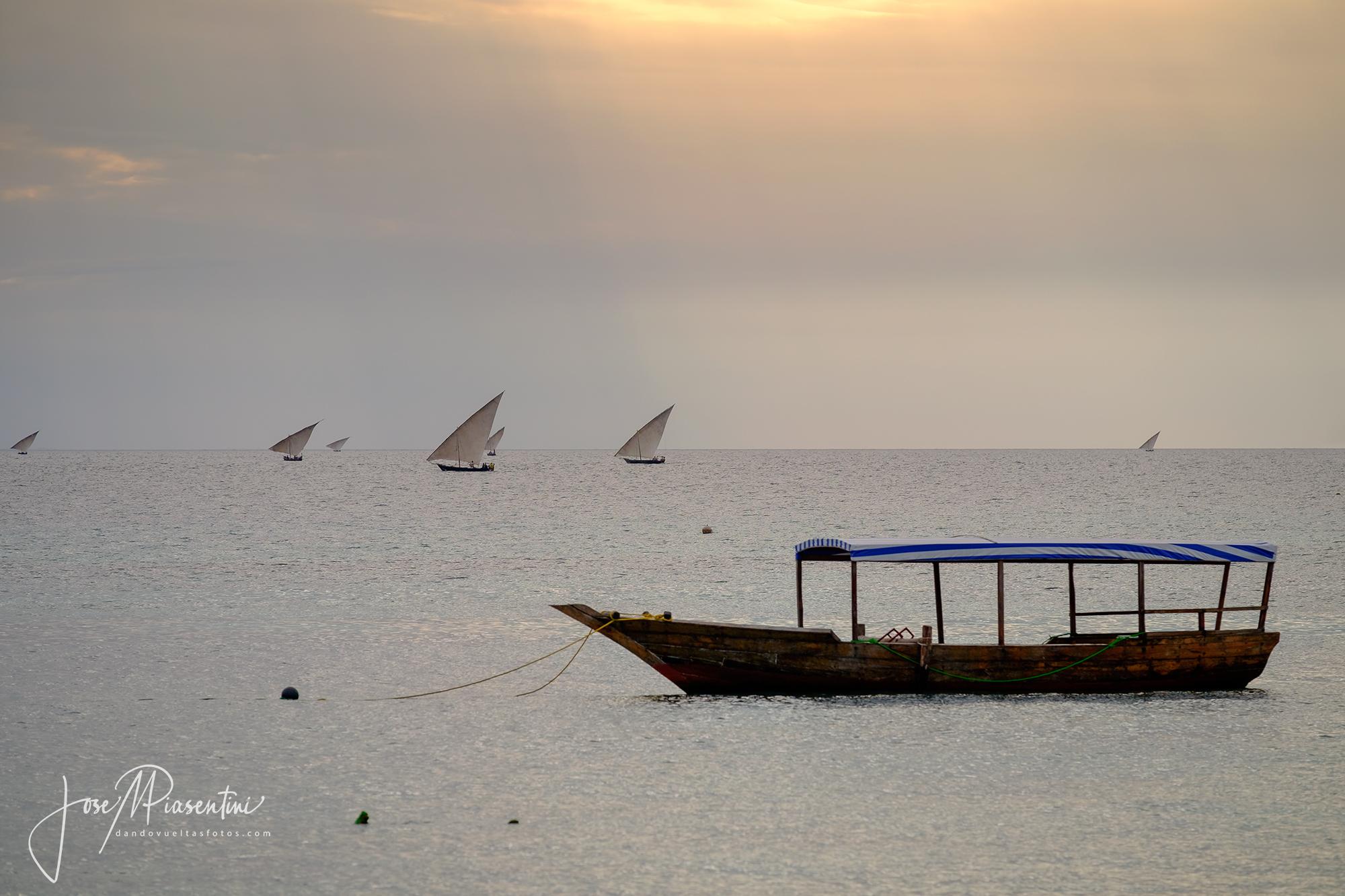 Fisherman dhow zanzibar