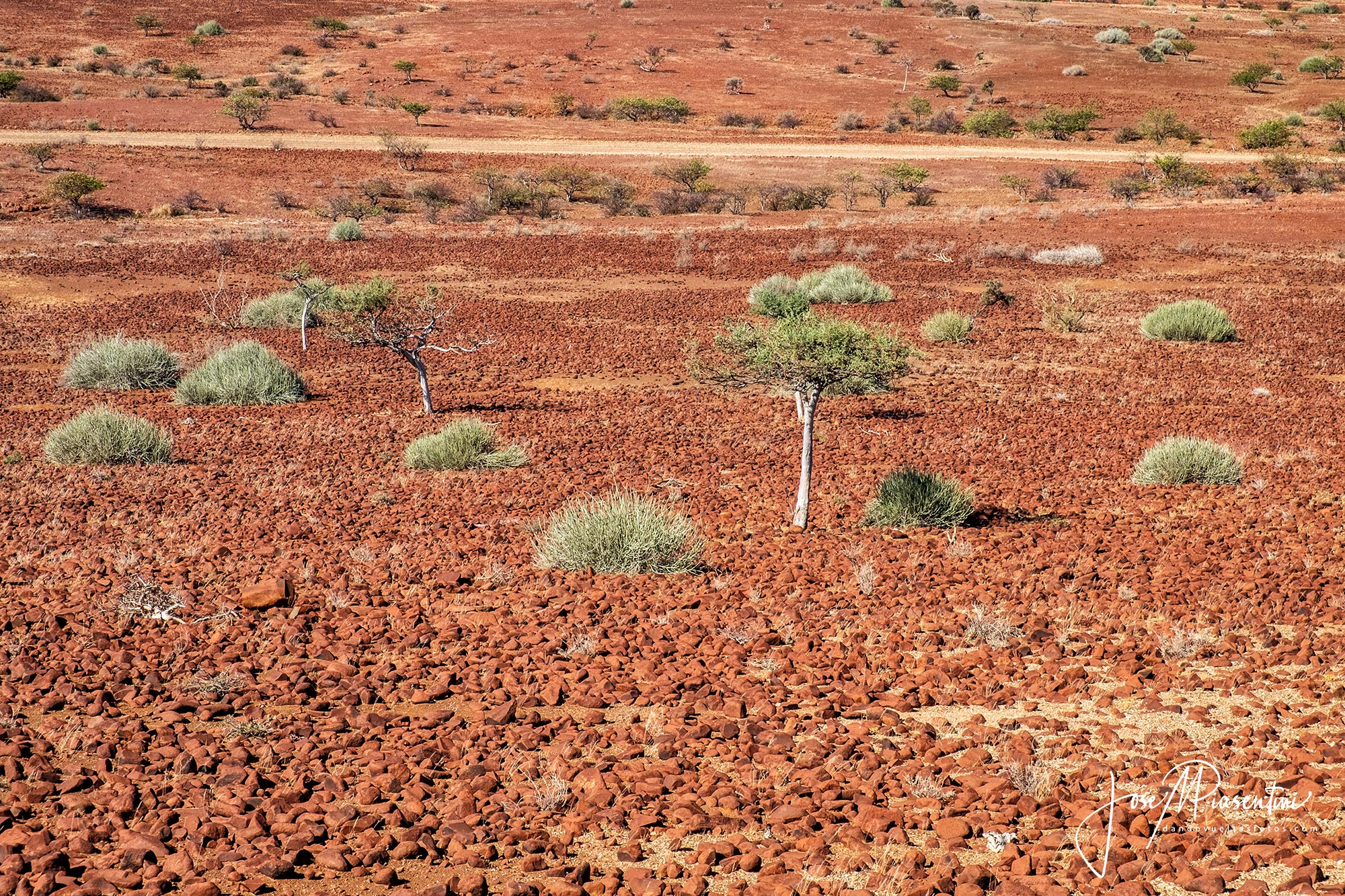 Damaraland-Camino-Twyfelfontein-Palmwag-Khowarib