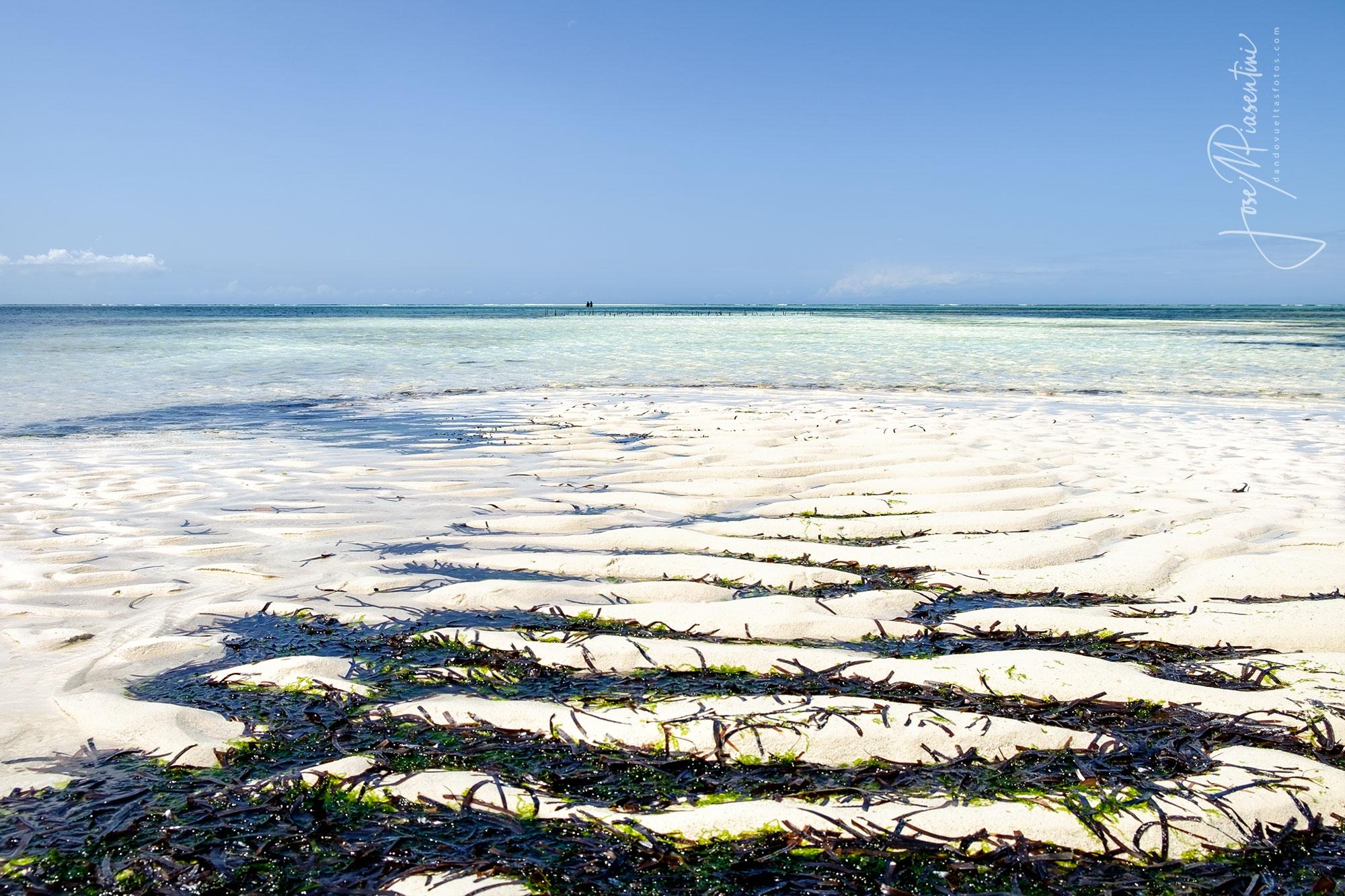 Matemwe Beach marea baja