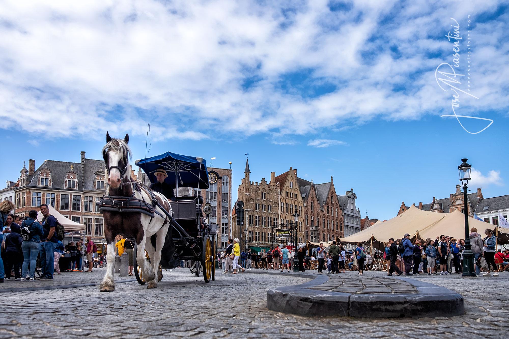Un paseo por la Plaza Grote Markt