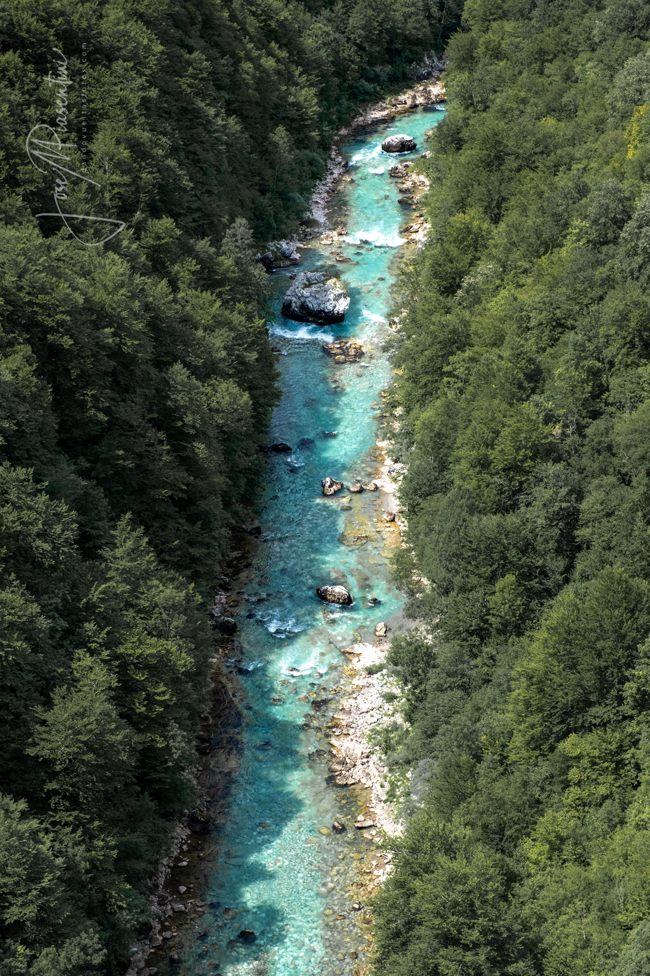 tara river view